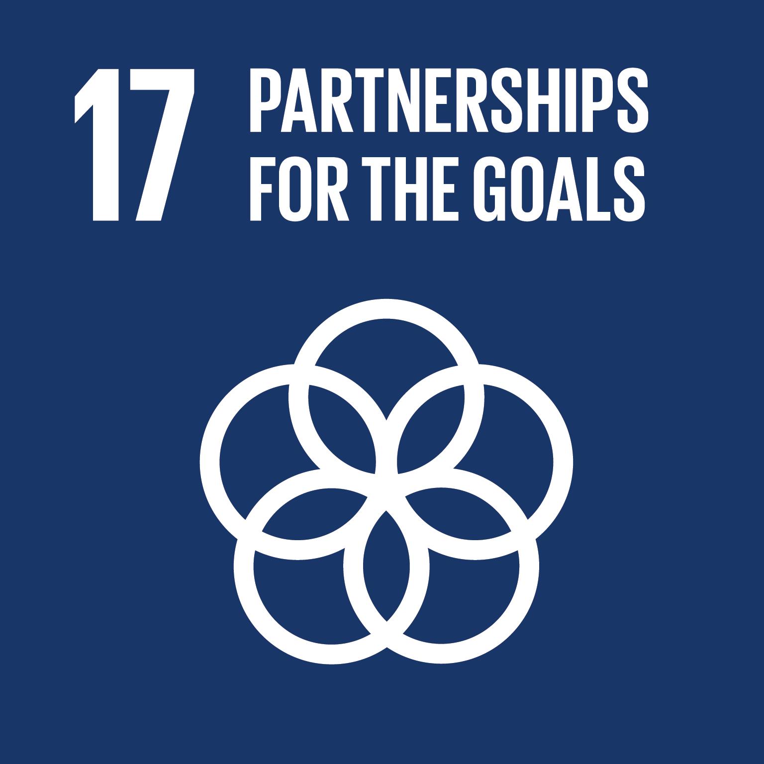 Partnerships for the SDGs