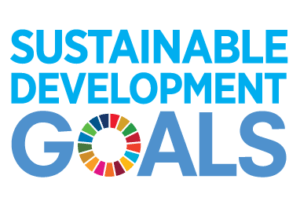 SDGs implementation to business strategy